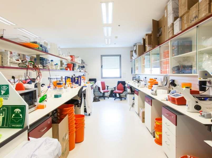 אוניברסיטת בר אילן – הפקולטה לרפואה בצפת